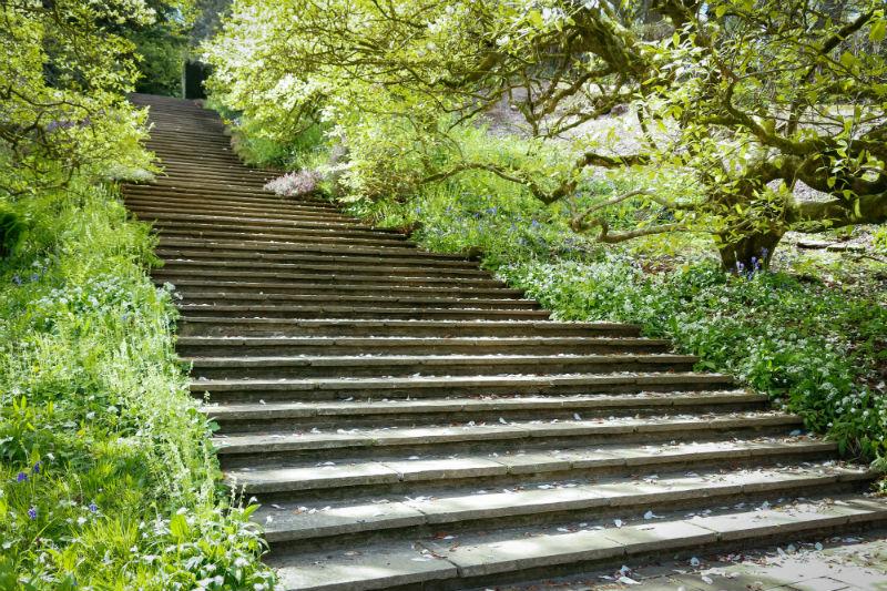 Steps - sarahjanewilliamson.com